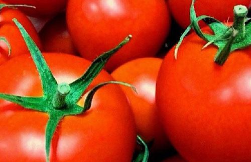 西红柿减肥
