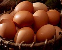 鸡蛋(均值)